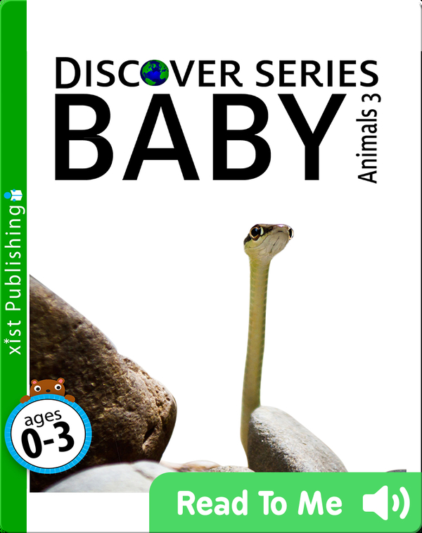 Discover Series: Baby Animals 3