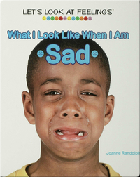 What I Look Like When I Am Sad