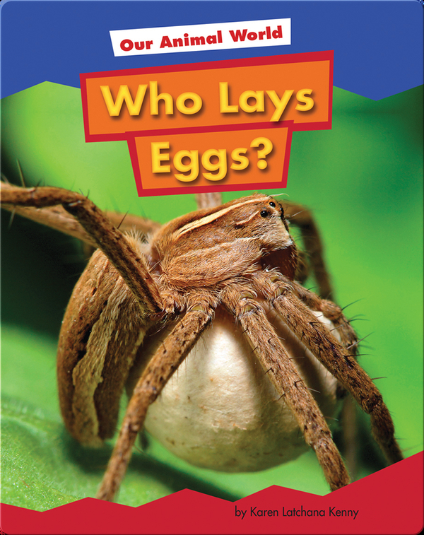 Who Lays Eggs?