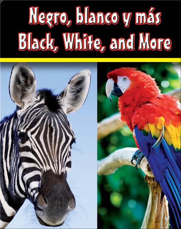 Negro, Blanco Y Mas  (Black, White, and More)