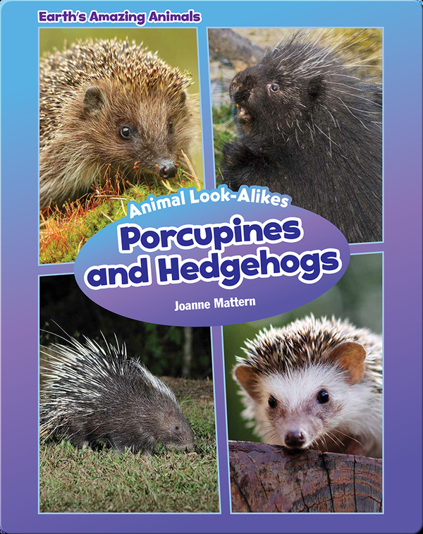 Porcupines and Hedgehogs