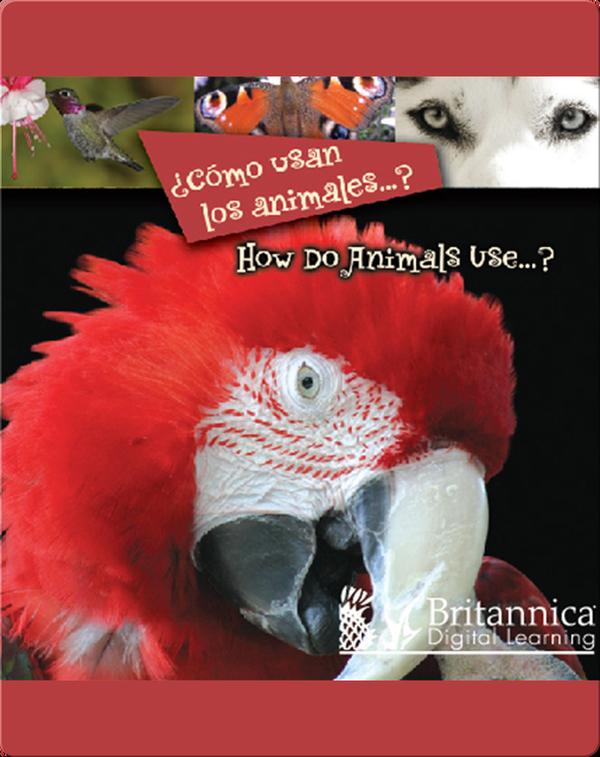 ¿Cómo usan los animales…? (How Do Animals Use…?)