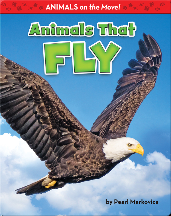 Animals That Fly