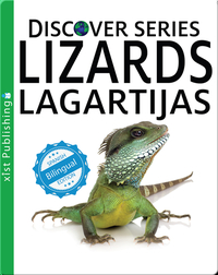 Lizards / Lagartijas