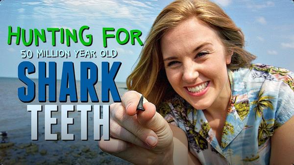 Hunting for 50 MILLION year old Shark Teeth!
