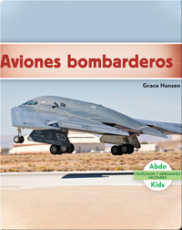 Aviones bombarderos