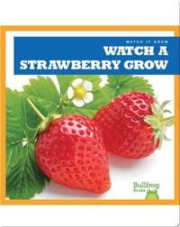 Watch a Strawberry Grow