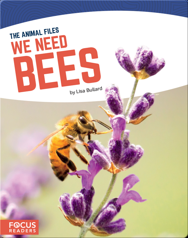 We Need Bees
