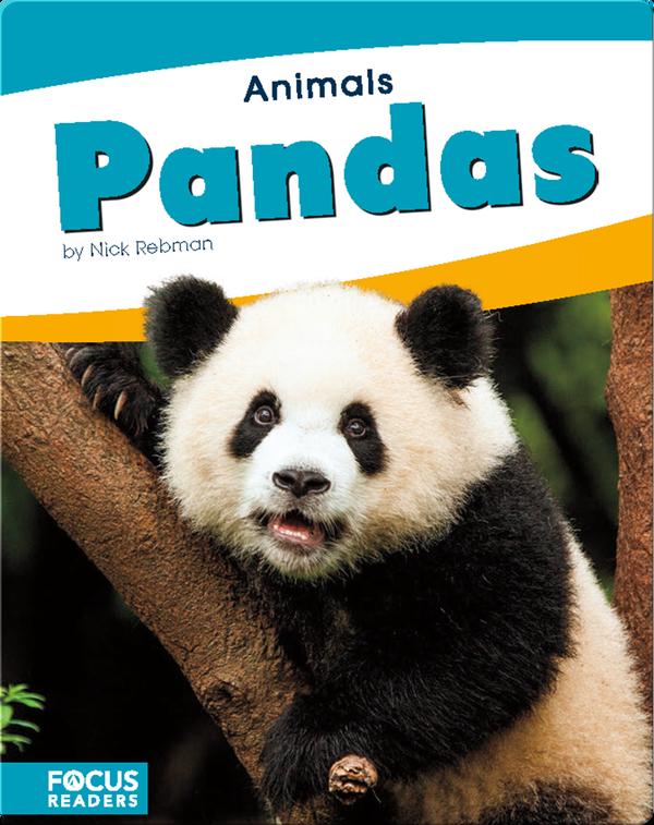 Animals: Pandas