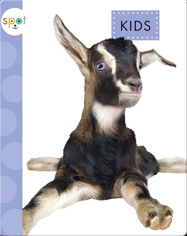 Baby Farm Animals: Kids