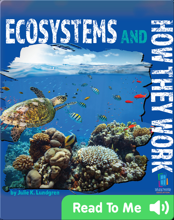 Ecosystems and How They Work
