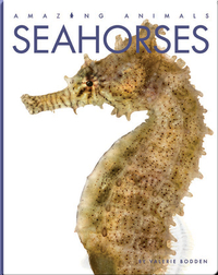 Amazing Animals: Seahorses