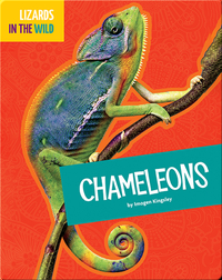 Lizards In The Wild: Chameleons