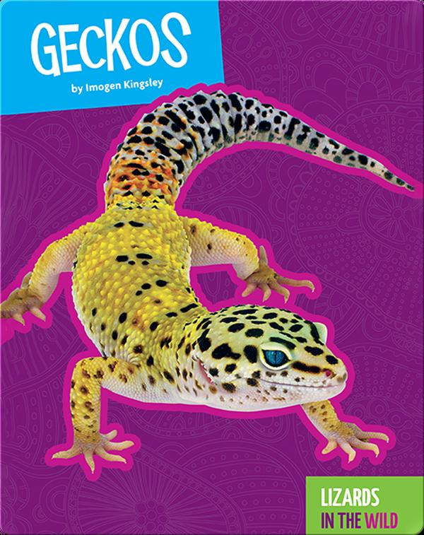 Lizards In The Wild: Geckos