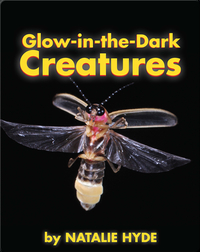 Glow-in-the-Dark Creatures