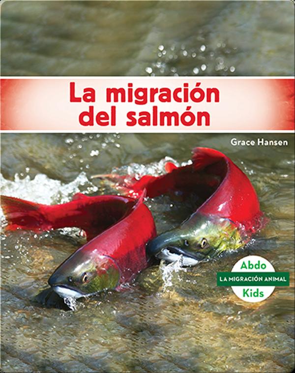 La migración del salmón