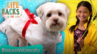 Dog Rain Coat + Other Waterproof Hacks | LIFE HACKS FOR KIDS