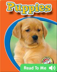 Puppies: Watch Animals Grow
