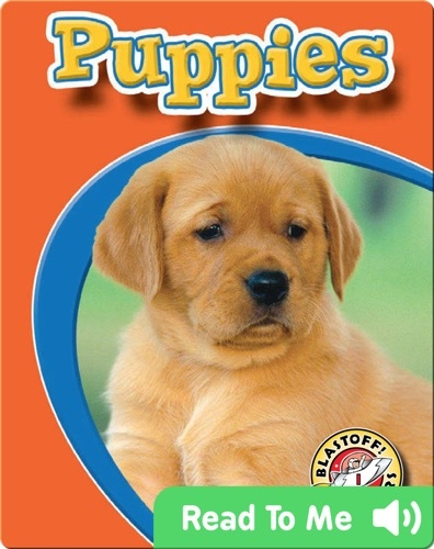 Puppies: Watch Animals Grow