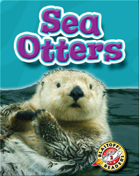 Sea Otters: Oceans Alive