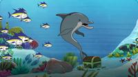 I'm A Dolphin