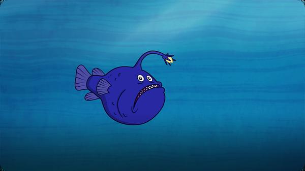 I'm A Football Fish