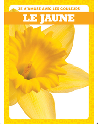 Le jaune (Yellow)