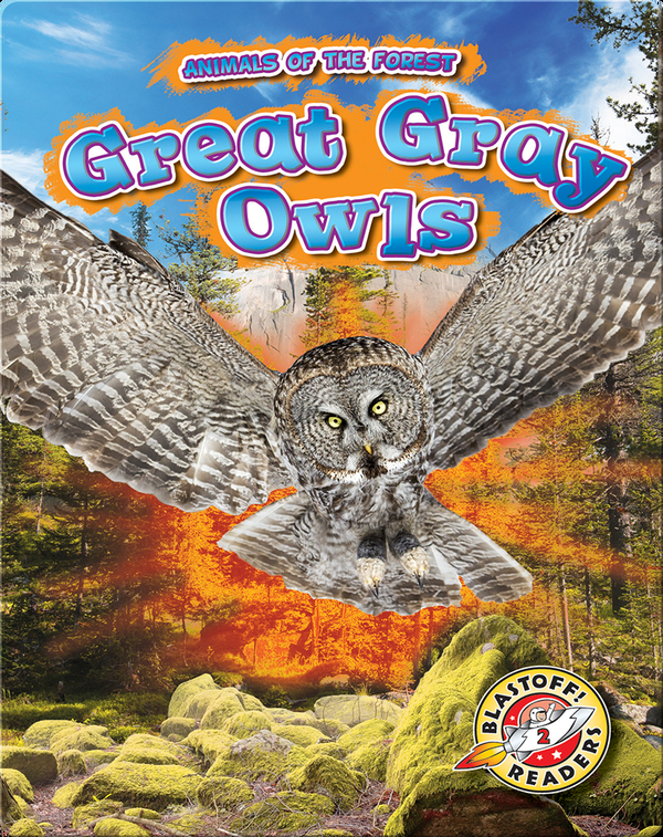 Animals of the Forest: Great Gray Owls