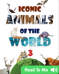 Iconic Animals of the World 3
