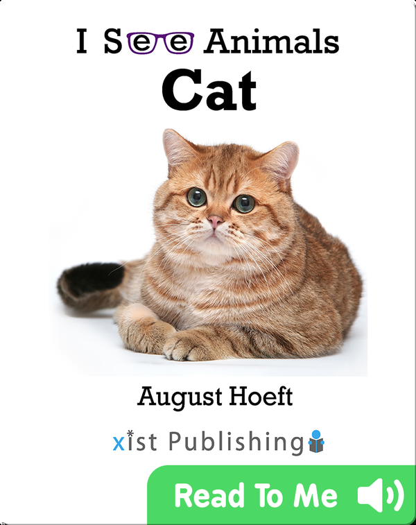 I See Animals: Cat