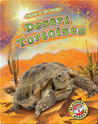 Animals of the Desert: Desert Tortoises