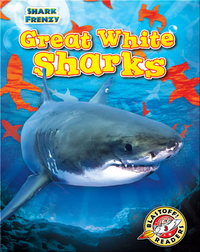 Shark Frenzy: Great White Sharks
