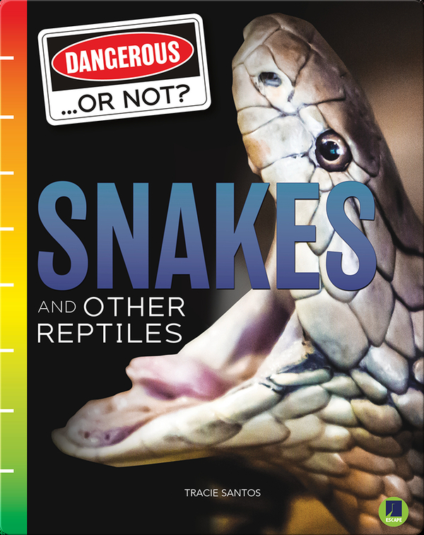 Dangerous...or Not?: Snakes and Other Reptiles