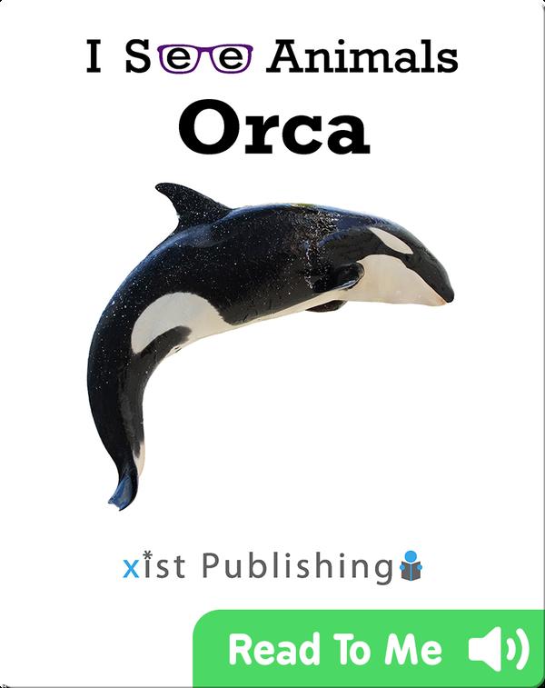 I See Animals: Orca