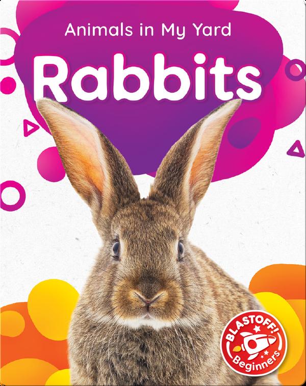 Animals in My Yard: Rabbits