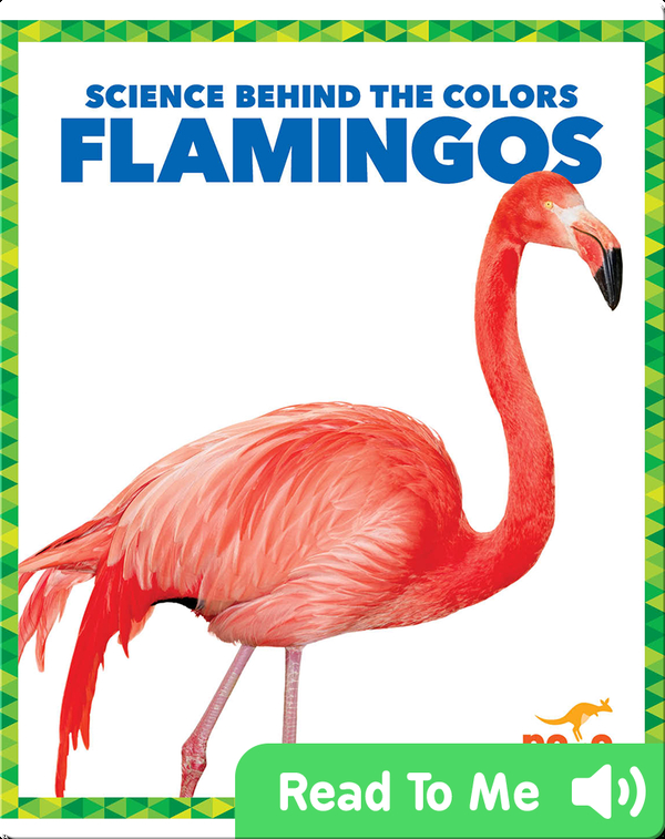 Science Behind the Colors: Flamingos