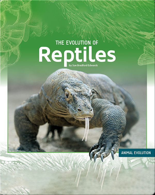 The Evolution of Reptiles