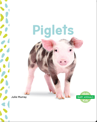 Baby Animals: Piglets