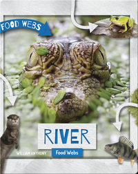 River Food Webs