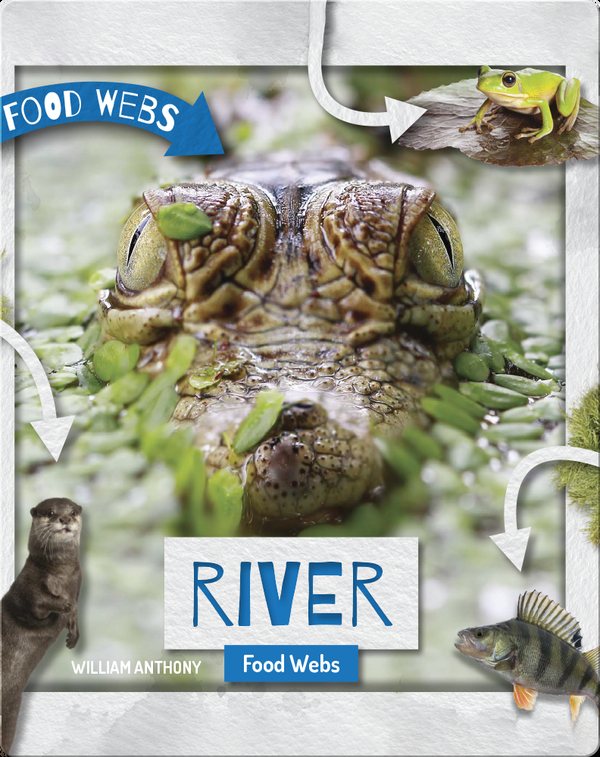 River Food Webs