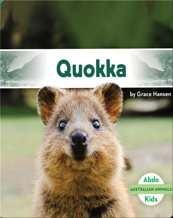 Australian Animals: Quokka