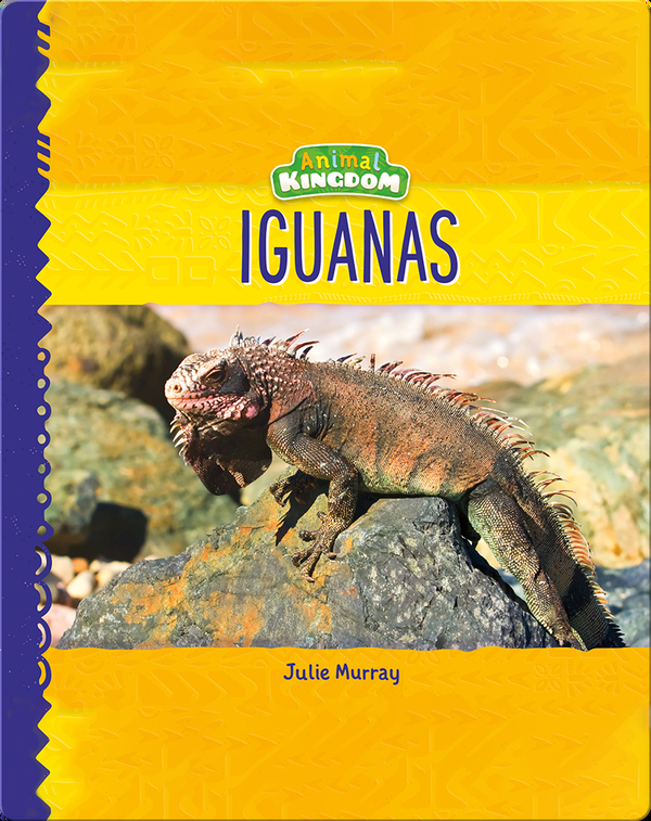 Animal Kingdom: Iguanas