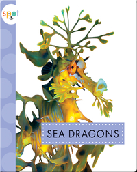 Ocean Animals: Sea Dragons