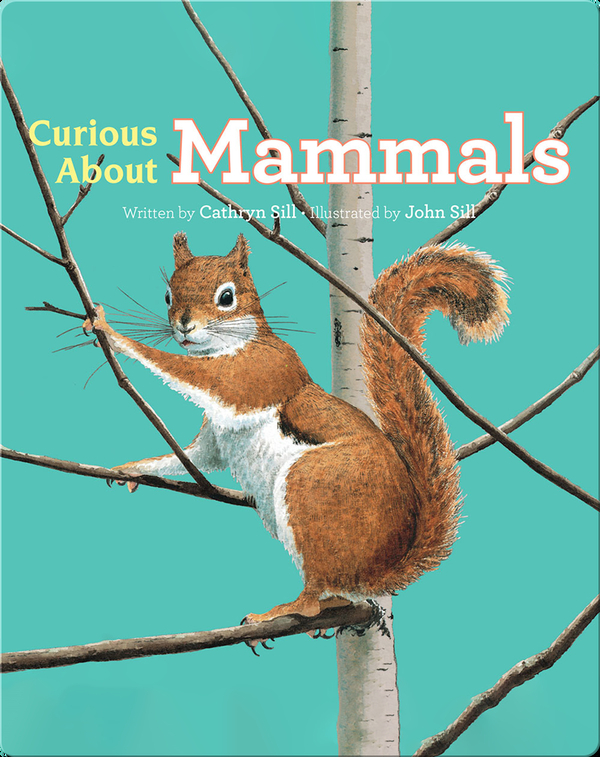 Discovering Nature: Curious About Mammals