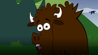 I'm a Bison
