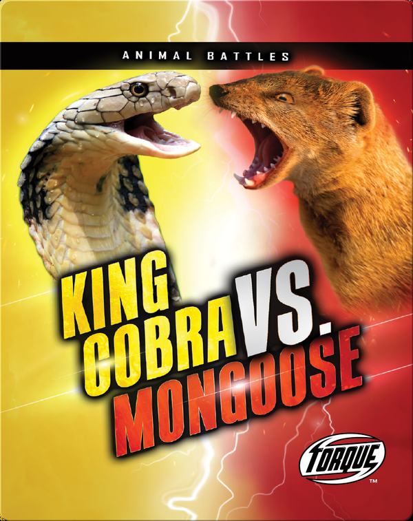 Animal Battles: King Cobra vs. Mongoose