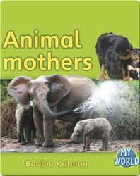 Animal Mothers
