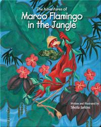 Marco Flamingo in the Jungle