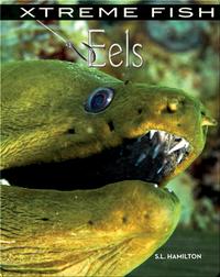 Xtreme Fish: Eels