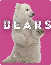 Zoo Animals: Bears